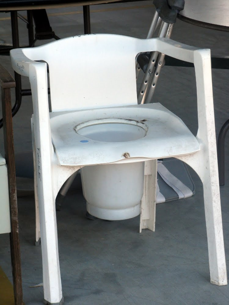 adult potty chair pottychair