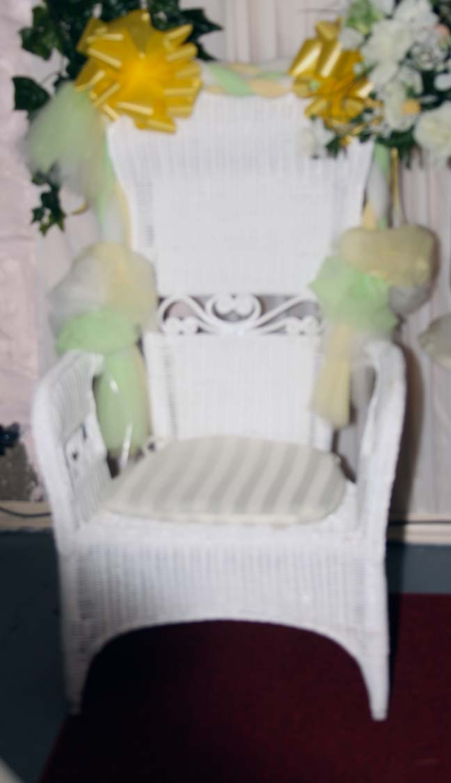 baby shower chair rental