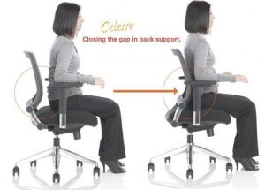 back support for office chair portable lumbar support for office chair the back pain relieving in incredible best lower back support for office chair x