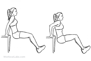chair abs workout chair tricep dip