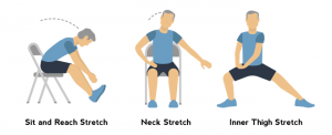 chair exercise for elderly seat and reach neck inner thigh stretch