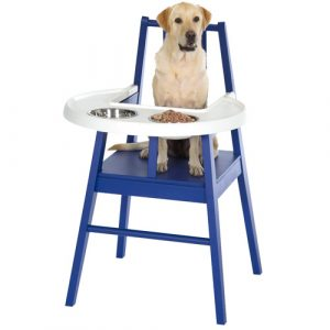 dog high chair doghighchair