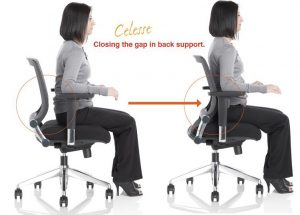 lumbar support office chair celesse
