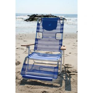 ostrich in beach chair n b bluestripe