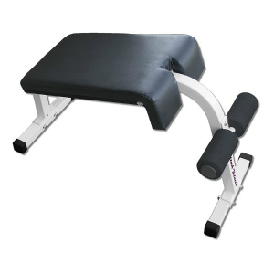 roman chair sit ups deltech fitness roman chair sit up bench df