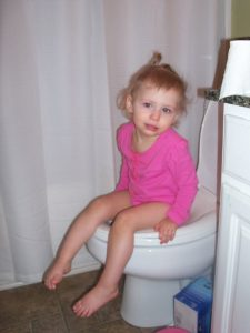 training potty chair potty training at